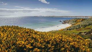 Iles Malouines – Falkland Islands