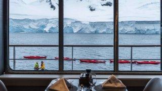 antarctique voyage vol et croisière georgie du sud