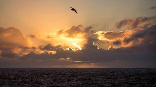 drake - voyage antarctique