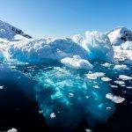 voyage antarctique idées itinéraires