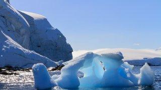 ile melchior - antarctique