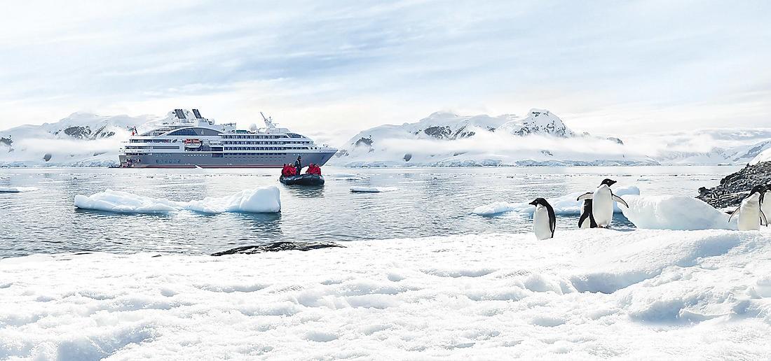 austral croisière antarctique - terra antarctica