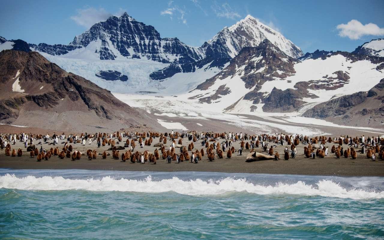 mer de weddell voyage antarctique