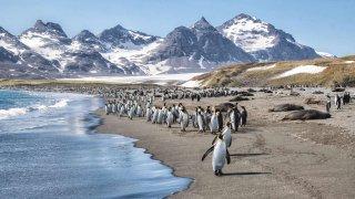 Cap vers les îles Charcot et Pierre Ier