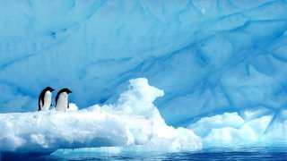 La Grande Aventure Antarctique