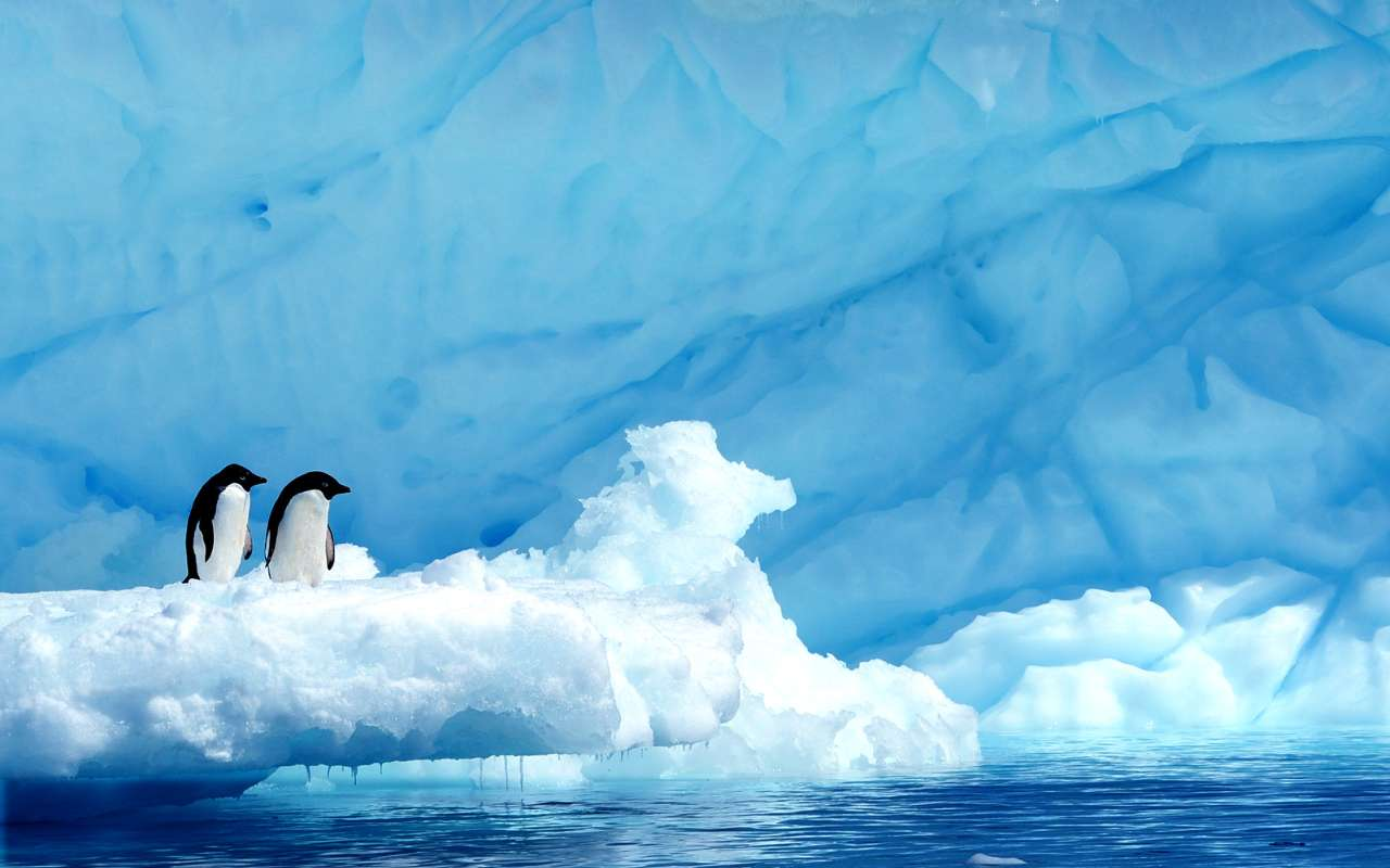 grande expédition antarctique