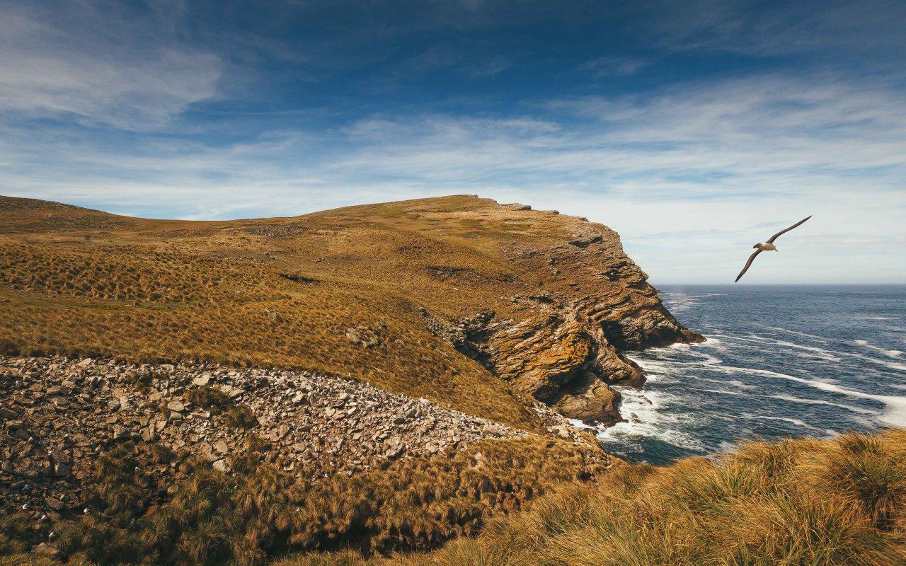 Îles Malouines - Falkland Islands