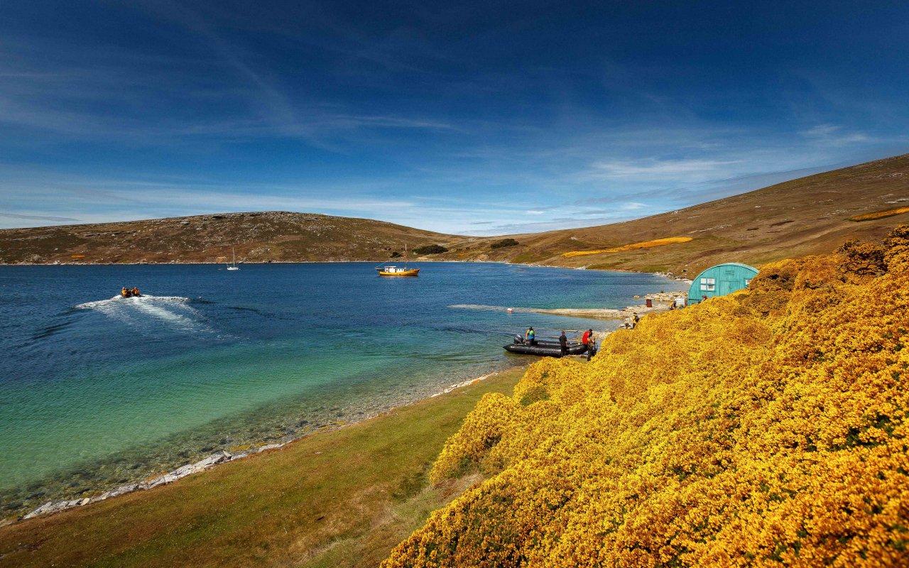 iles malouines - falkland islands