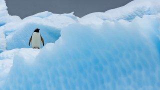 antarctique voyage grande boucle australe