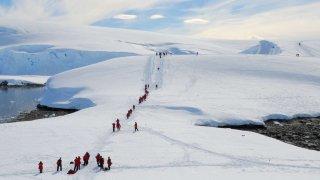 antarctique voyage odyssée