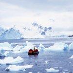 paradise harbour - voyage antarctique