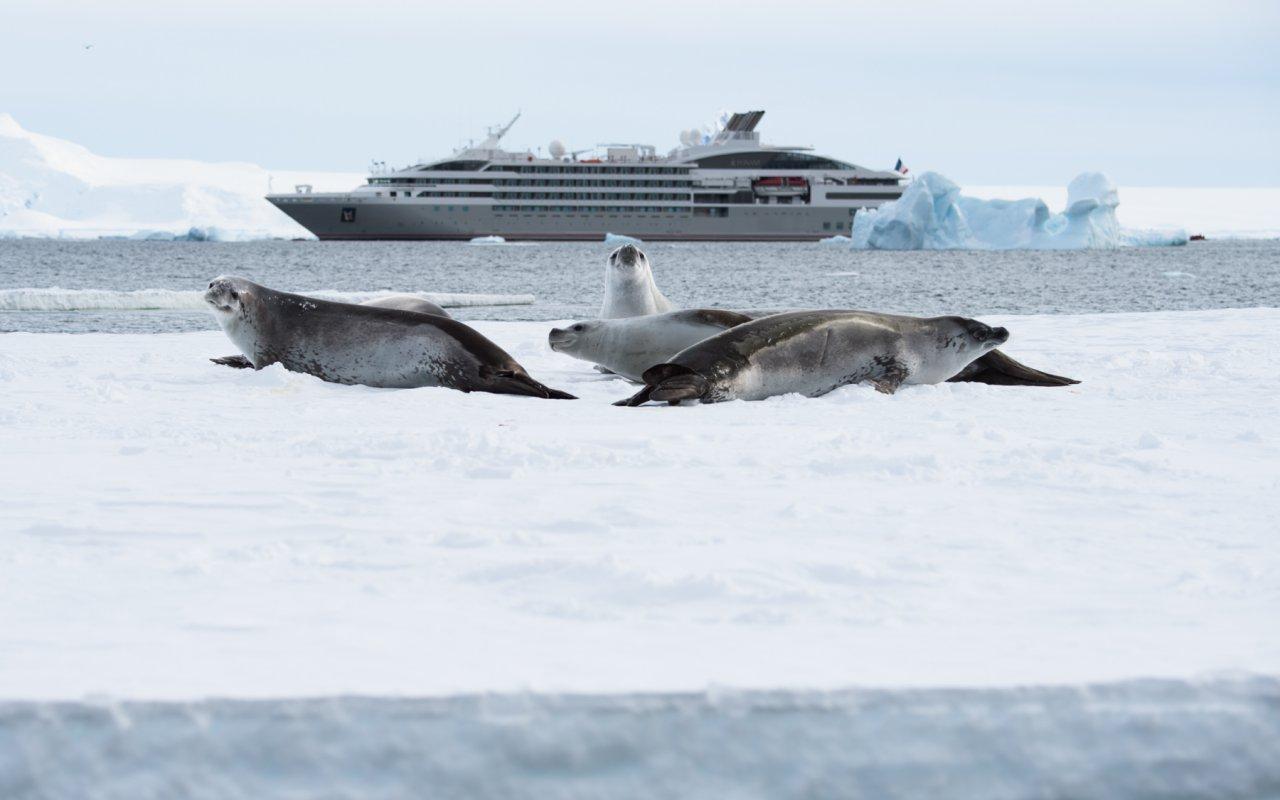 croisière cercle polaire - voyage antarctique - terra antarctica