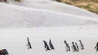 circuit antarctique traversée cercle polaire