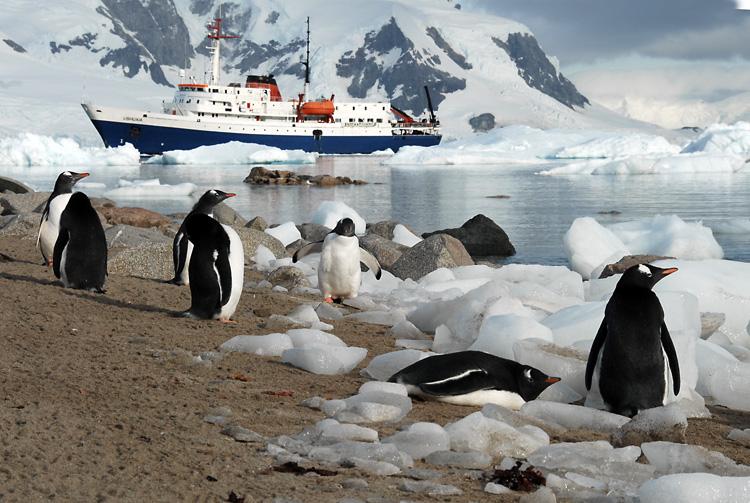 croisière antarctique navire ushuaia